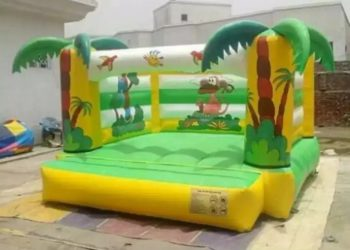 Jumping Castle Slide New